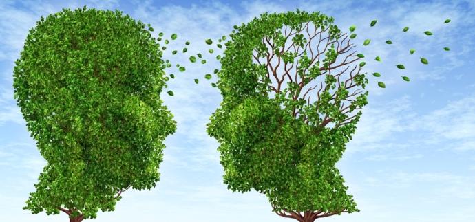 راهمای جامع پیگیری از آلزایمر