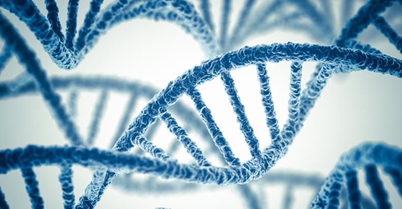مشاور ژنتیک کیست و چه وظایفی دارد؟- ساختار دی ان ای