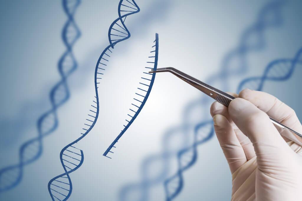 مشاور ژنتیک کیست و چه وظایفی دارد؟